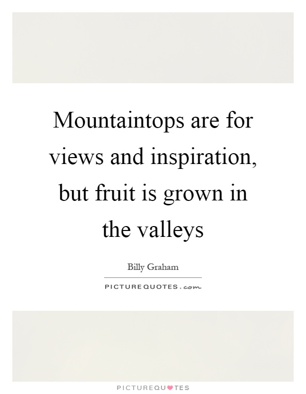 Mountaintops are for views and inspiration, but fruit is grown in the valleys Picture Quote #1