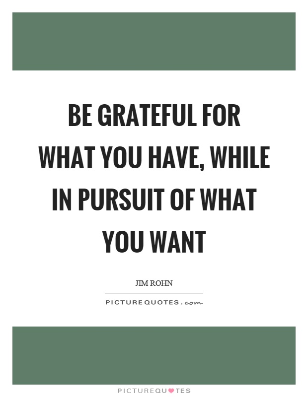 Be grateful for what you have, while in pursuit of what you want Picture Quote #1