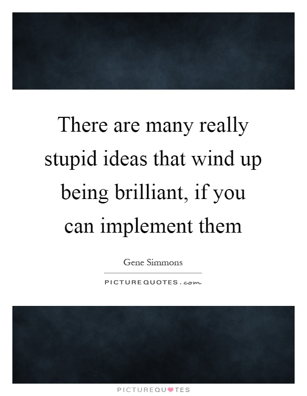 There are many really stupid ideas that wind up being brilliant, if you can implement them Picture Quote #1