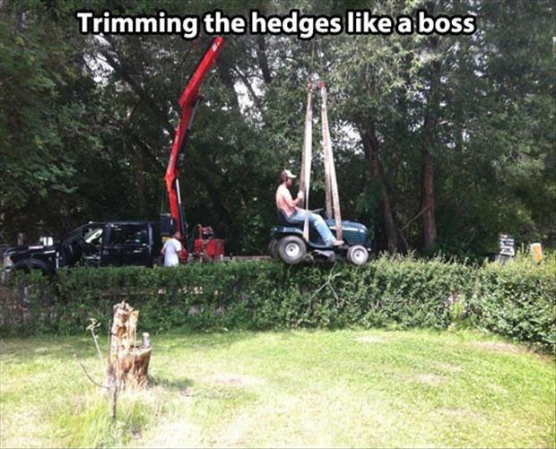 Trimming the hedges like a boss Picture Quote #1