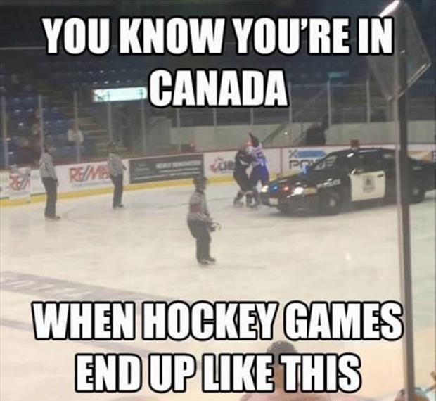 You know you're in Canada when hockey games end up like this Picture Quote #1