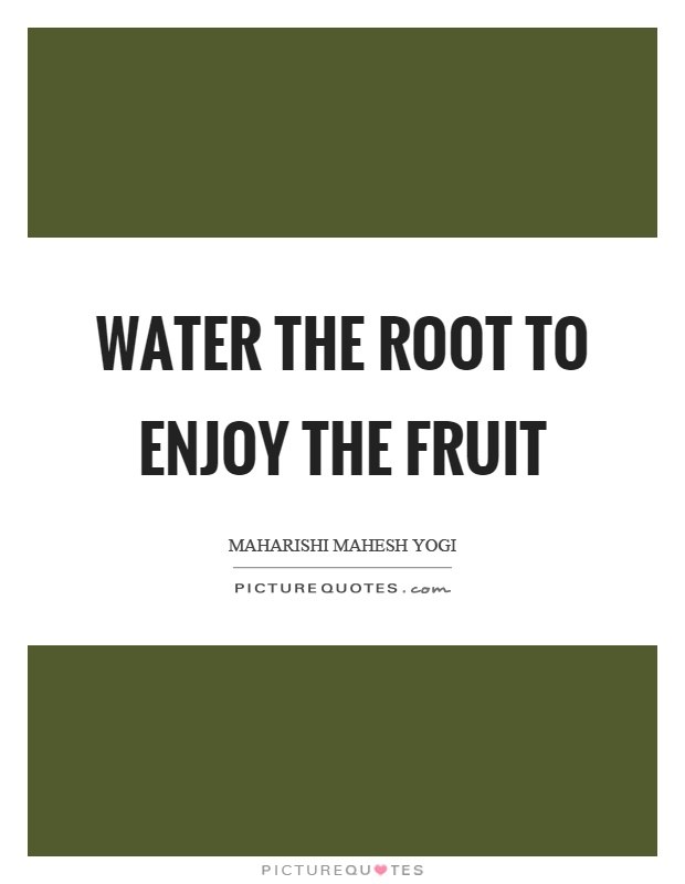 Water the root to enjoy the fruit Picture Quote #1