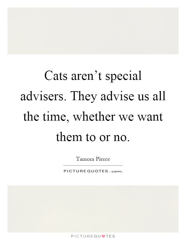 Cats aren't special advisers. They advise us all the time, whether we want them to or no Picture Quote #1