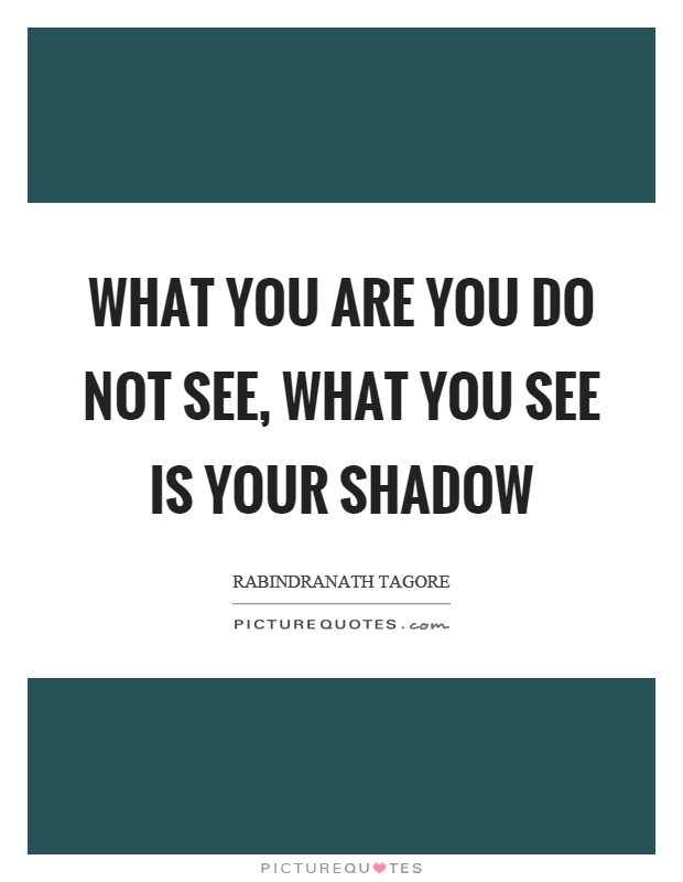 What you are you do not see, what you see is your shadow Picture Quote #1