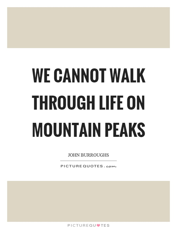 We cannot walk through life on mountain peaks Picture Quote #1