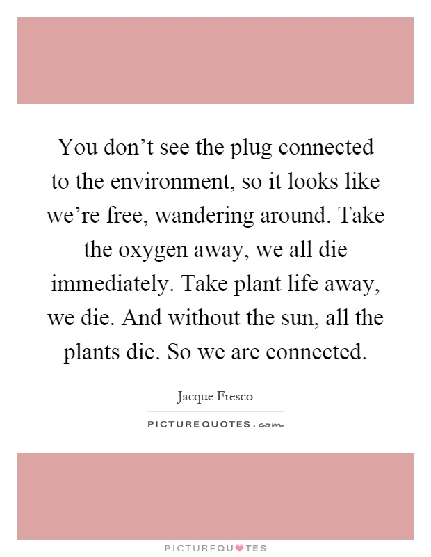 You don't see the plug connected to the environment, so it looks like we're free, wandering around. Take the oxygen away, we all die immediately. Take plant life away, we die. And without the sun, all the plants die. So we are connected Picture Quote #1