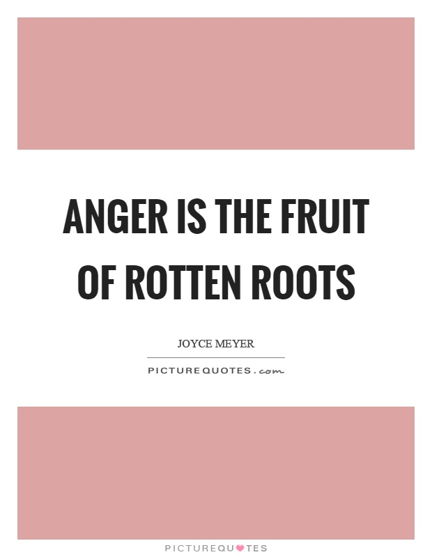 Anger is the fruit of rotten roots Picture Quote #1