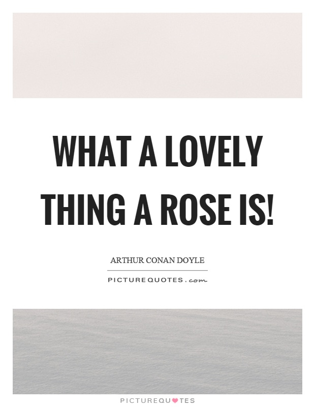 What a lovely thing a rose is! Picture Quote #1