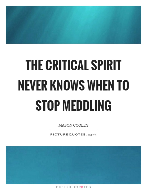 The critical spirit never knows when to stop meddling Picture Quote #1