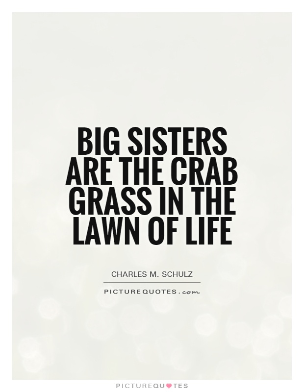 Big sisters are the crab grass in the lawn of life Picture Quote #1