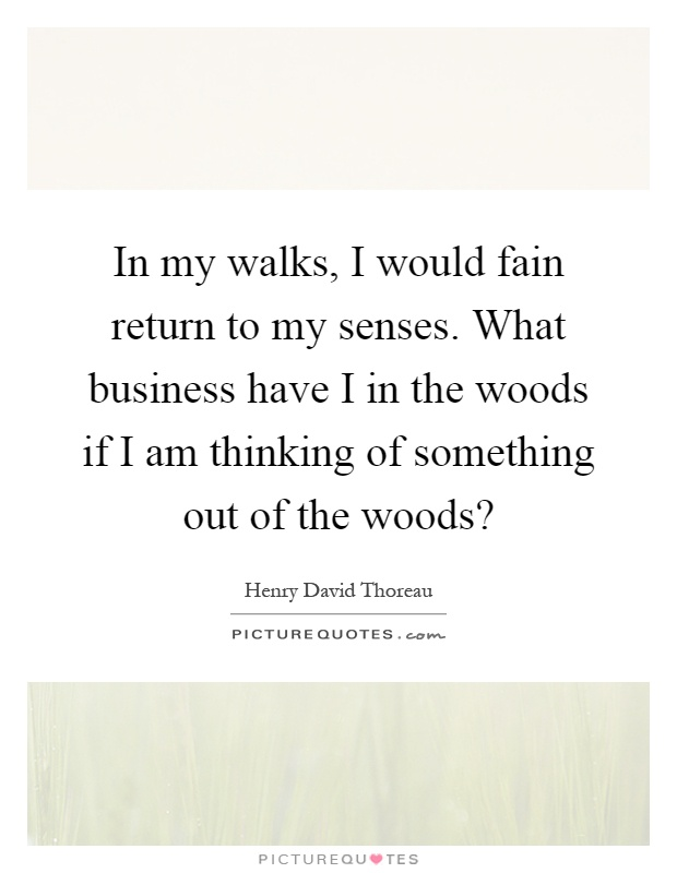 In my walks, I would fain return to my senses. What business have I in the woods if I am thinking of something out of the woods? Picture Quote #1