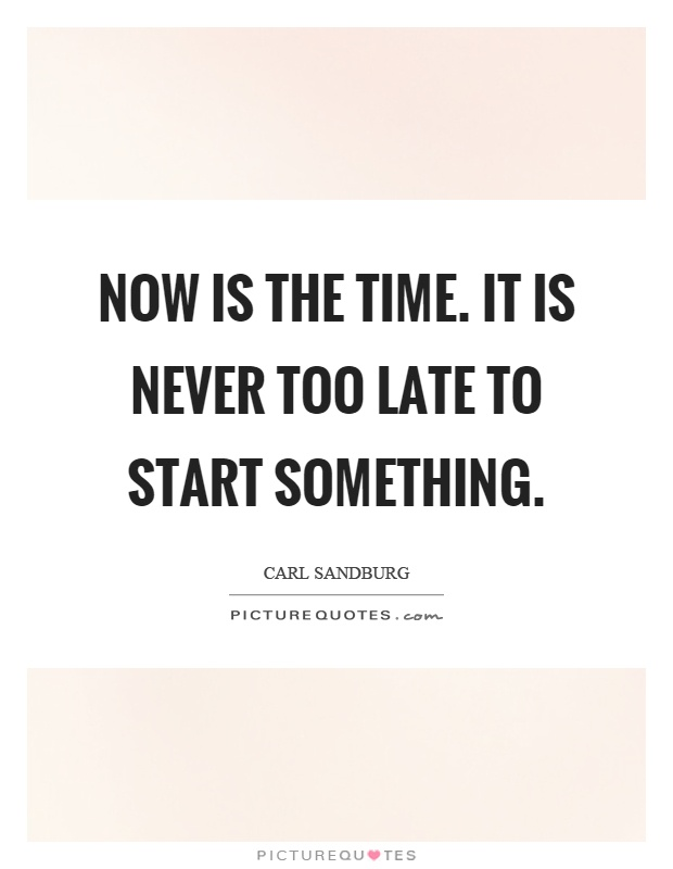 Now is the time. It is never too late to start something Picture Quote #1