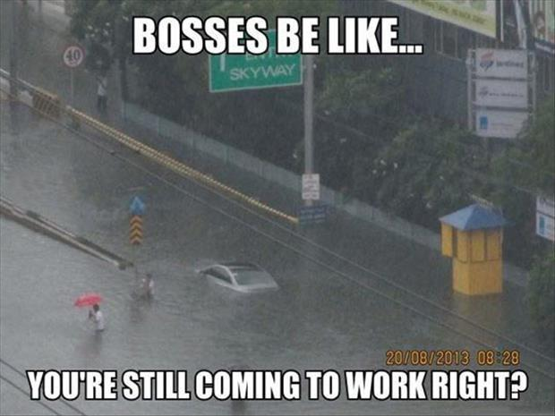 Bosses be like... you're still coming to work right? Picture Quote #1