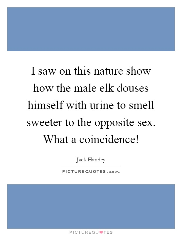I saw on this nature show how the male elk douses himself with urine to smell sweeter to the opposite sex. What a coincidence! Picture Quote #1