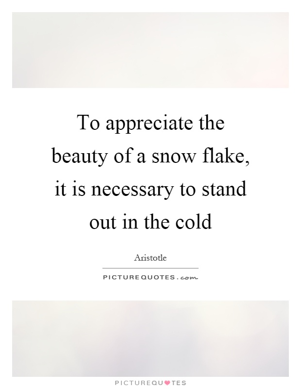 To appreciate the beauty of a snow flake, it is necessary to stand out in the cold Picture Quote #1
