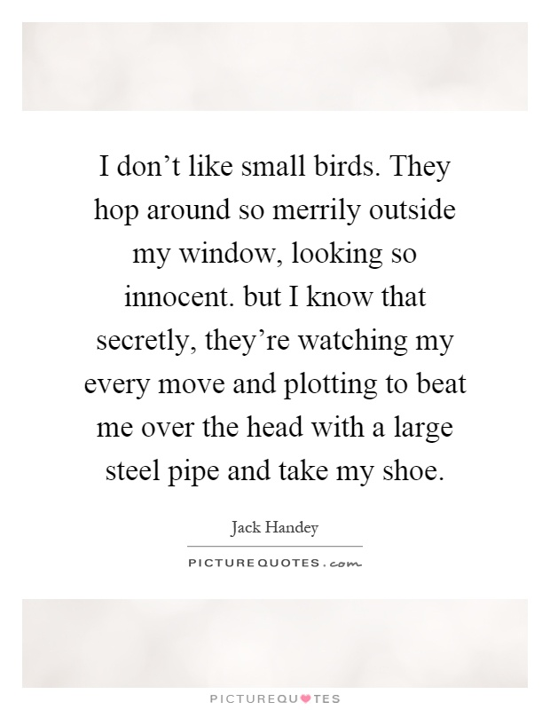 I don't like small birds. They hop around so merrily outside my window, looking so innocent. but I know that secretly, they're watching my every move and plotting to beat me over the head with a large steel pipe and take my shoe Picture Quote #1