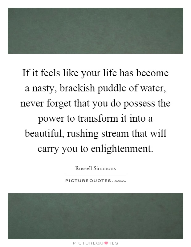 If it feels like your life has become a nasty, brackish puddle of water, never forget that you do possess the power to transform it into a beautiful, rushing stream that will carry you to enlightenment Picture Quote #1