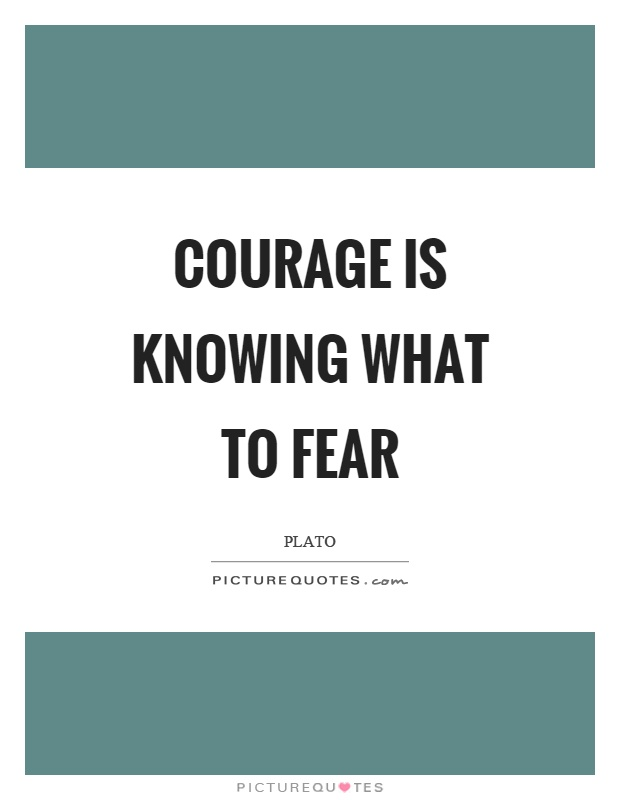 Courage is knowing what to fear Picture Quote #1