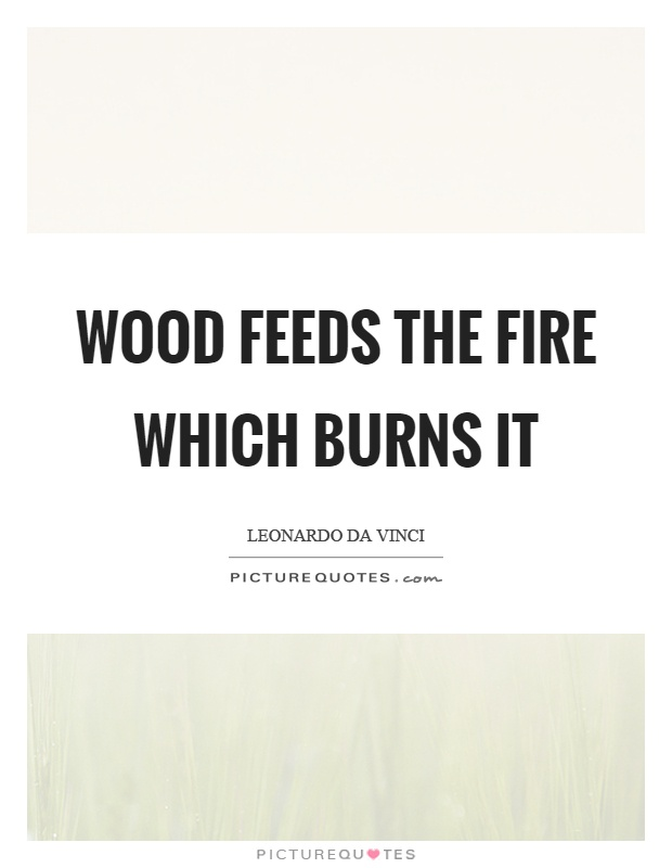 Wood feeds the fire which burns it Picture Quote #1