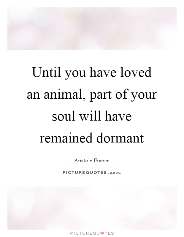 Until you have loved an animal, part of your soul will have remained dormant Picture Quote #1