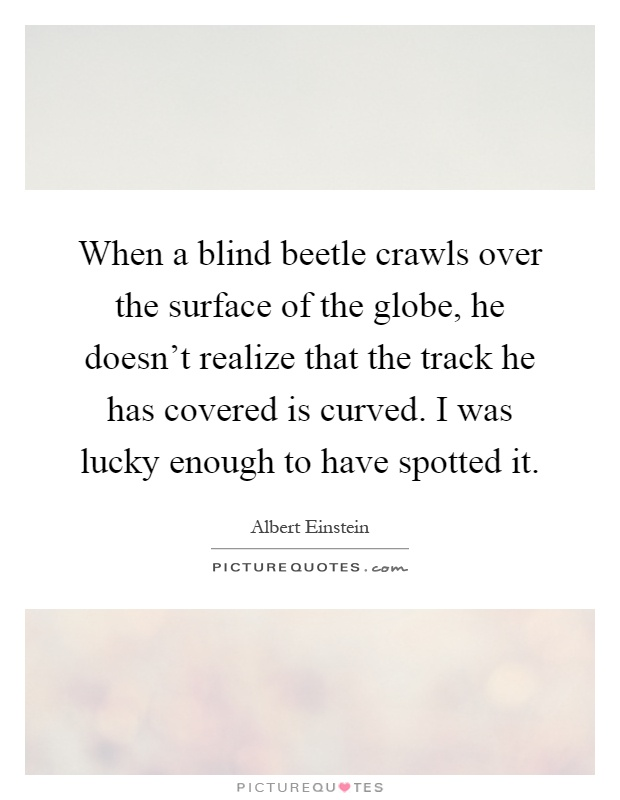 When a blind beetle crawls over the surface of the globe, he doesn't realize that the track he has covered is curved. I was lucky enough to have spotted it Picture Quote #1