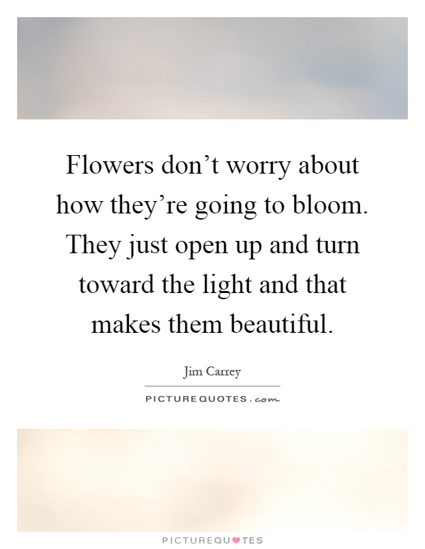 Bloom Quotes Cool Flowers Don't Worry About How They're Going To Bloomthey Just