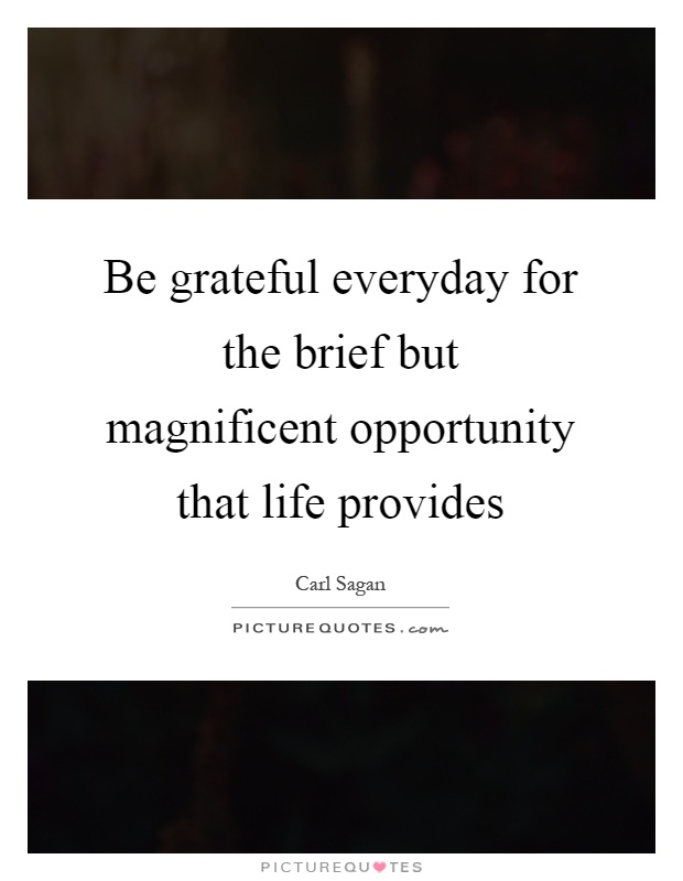 Be grateful everyday for the brief but magnificent opportunity that life provides Picture Quote #1