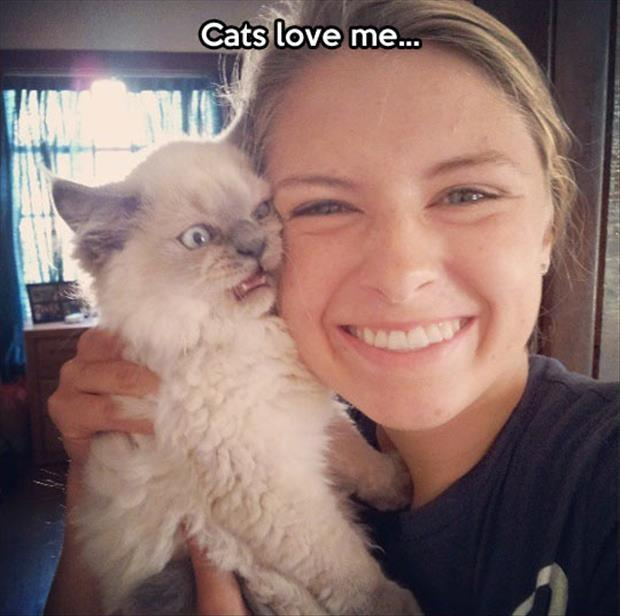 Cats love me Picture Quote #1