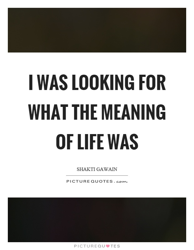 Meaning Of Life Quotes Entrancing I Was Looking For What The Meaning Of Life Was  Picture Quotes