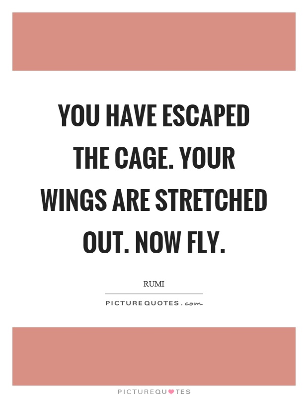 You have escaped the cage. Your wings are stretched out. Now fly Picture Quote #1