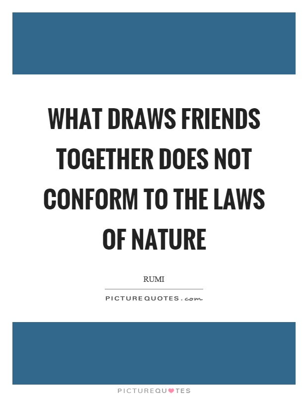 What draws friends together does not conform to the laws of nature Picture Quote #1
