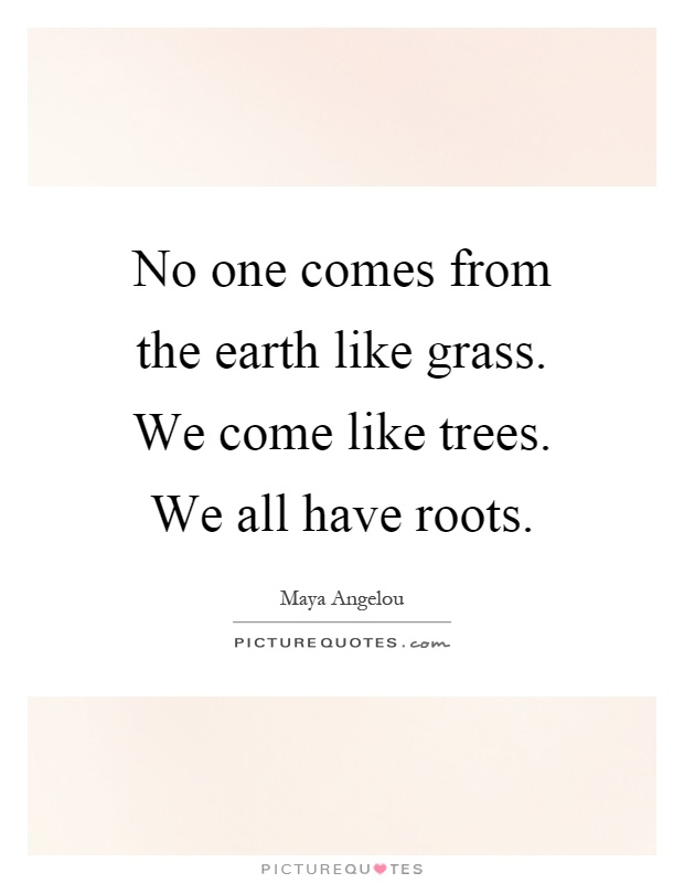 No one comes from the earth like grass. We come like trees. We all have roots Picture Quote #1