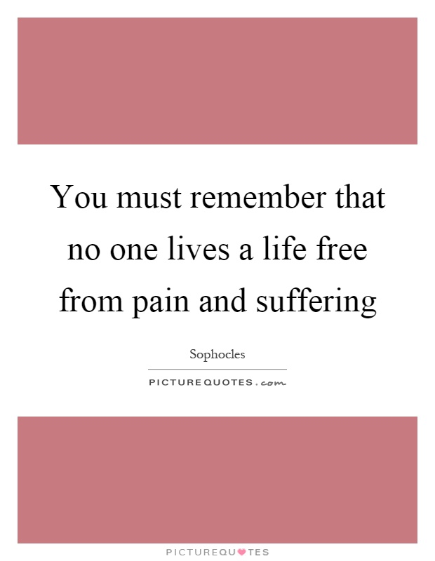 You must remember that no one lives a life free from pain and suffering Picture Quote #1