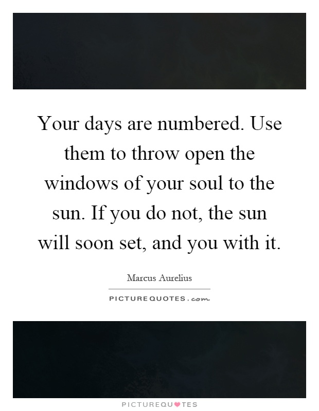 Your days are numbered. Use them to throw open the windows of your soul to the sun. If you do not, the sun will soon set, and you with it Picture Quote #1