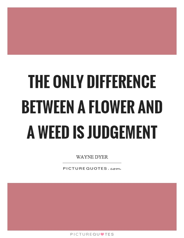 The only difference between a flower and a weed is judgement Picture Quote #1