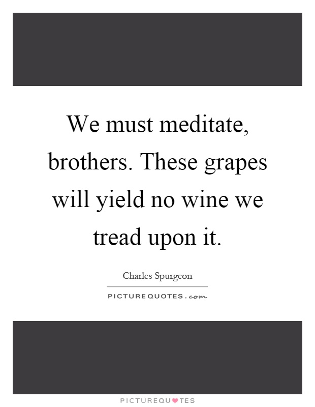 We must meditate, brothers. These grapes will yield no wine we tread upon it Picture Quote #1