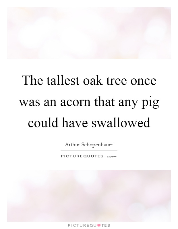 The tallest oak tree once was an acorn that any pig could have swallowed Picture Quote #1