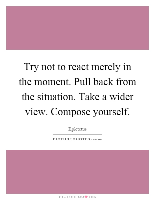 Try not to react merely in the moment. Pull back from the situation. Take a wider view. Compose yourself Picture Quote #1