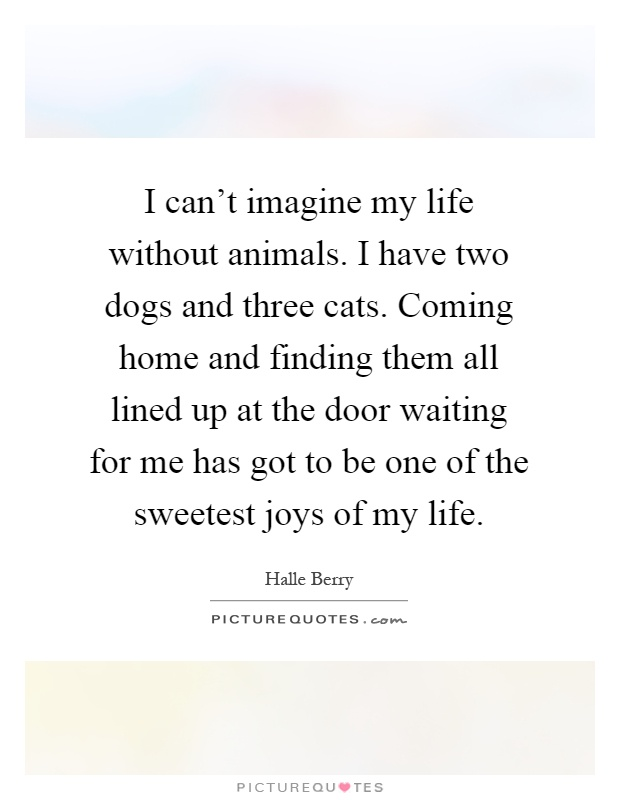 I can't imagine my life without animals. I have two dogs and three cats. Coming home and finding them all lined up at the door waiting for me has got to be one of the sweetest joys of my life Picture Quote #1