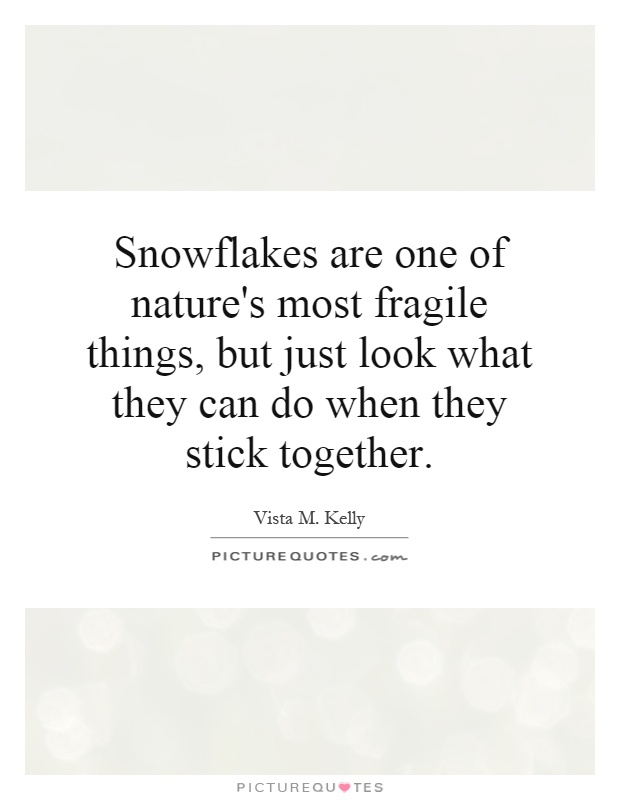 Snowflakes are one of nature's most fragile things, but just look what they can do when they stick together Picture Quote #1