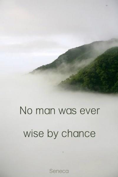 No man was ever wise by chance Picture Quote #2