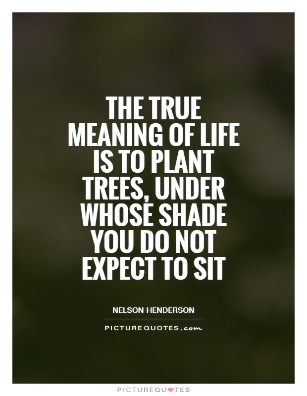 Plant Trees Under Whose Shade Quote : Tree quotes meaning of life true
