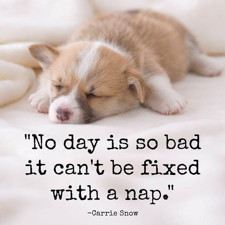 No day is so bad it can't be fixed with a nap Picture Quote #1