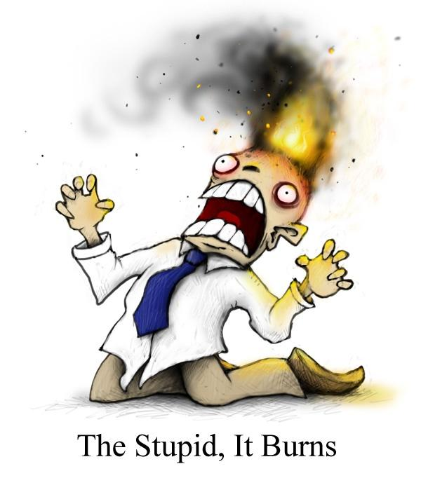 The stupid, it burns Picture Quote #1
