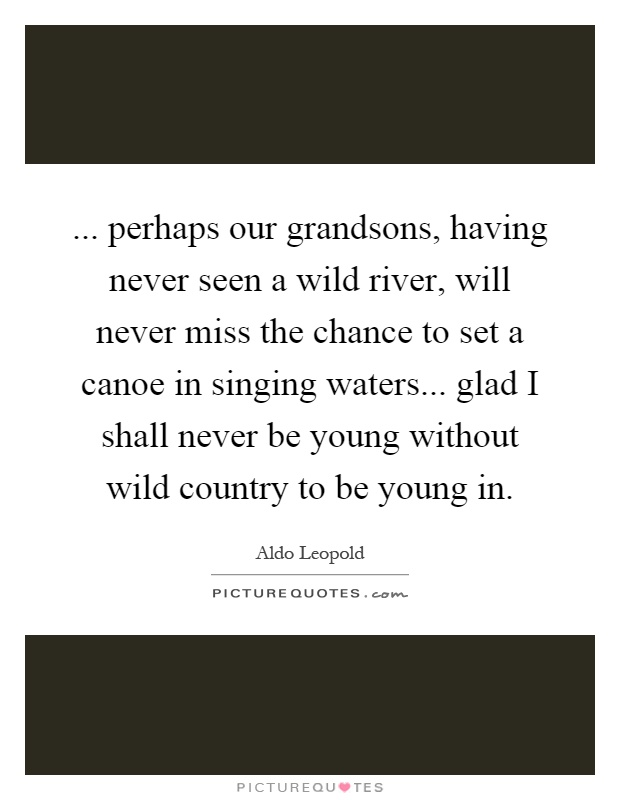 ... perhaps our grandsons, having never seen a wild river, will never miss the chance to set a canoe in singing waters... glad I shall never be young without wild country to be young in Picture Quote #1