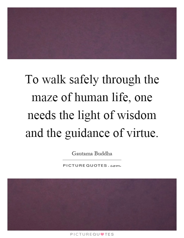 To walk safely through the maze of human life, one needs the light of wisdom and the guidance of virtue Picture Quote #1