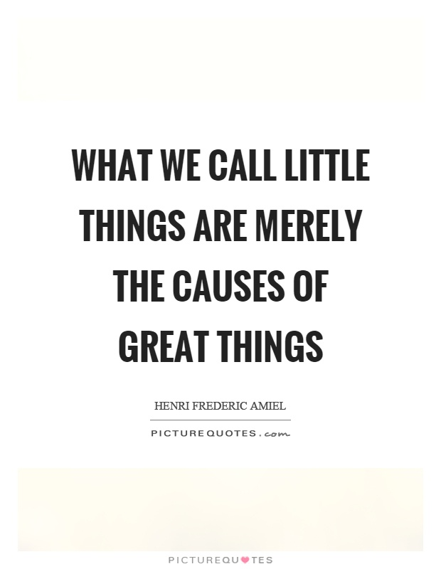 What we call little things are merely the causes of great things Picture Quote #1
