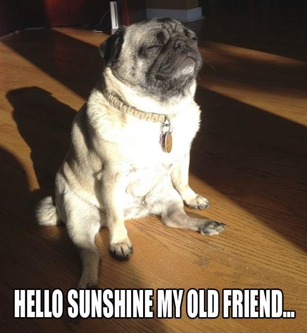 Hello sunshine my old friend Picture Quote #1