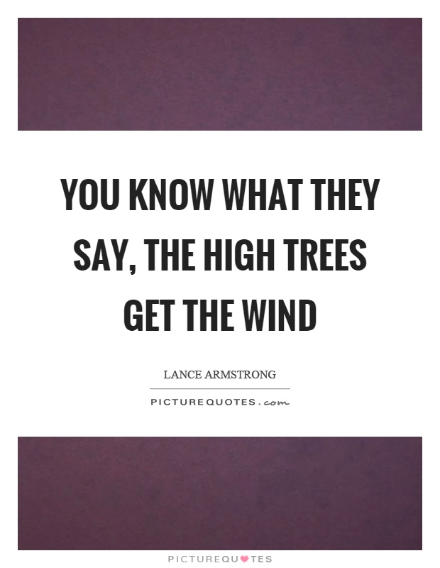 You know what they say, the high trees get the wind Picture Quote #1