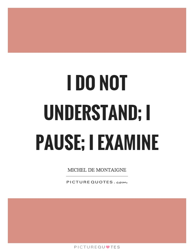 I do not understand; I pause; I examine Picture Quote #1